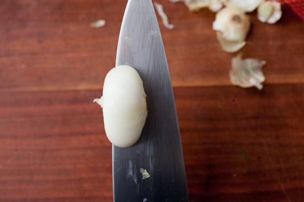 Onion 03